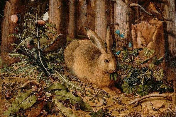 A Hare In The Forest Print