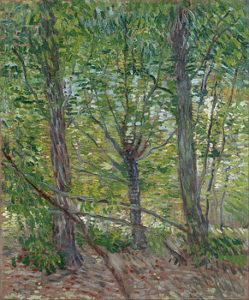 1-trees-vincent-van-gogh