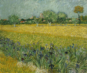 2-field-with-flowers-near-arles-vincent-van-gogh