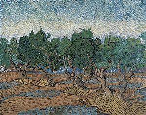 2-olive-grove-vincent-van-gogh