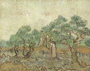 2-the-olive-orchard-vincent-van-gogh