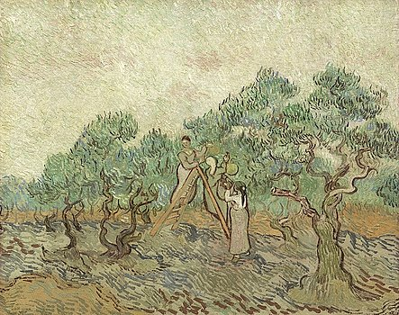 2-the-olive-orchard-vincent-van-gogh