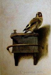 3-the-goldfinch-carel-fabritius