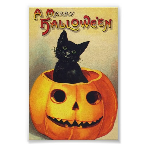 Halloween Black Cat In Pumpkin Vintage Art Poster