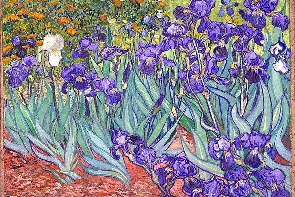purple-irises-vincent-van-gogh