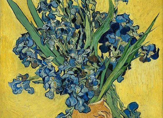 Vase With Irises Print